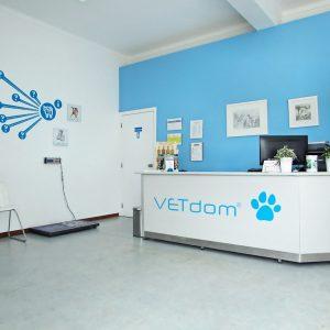 VetDom - Sala de espera